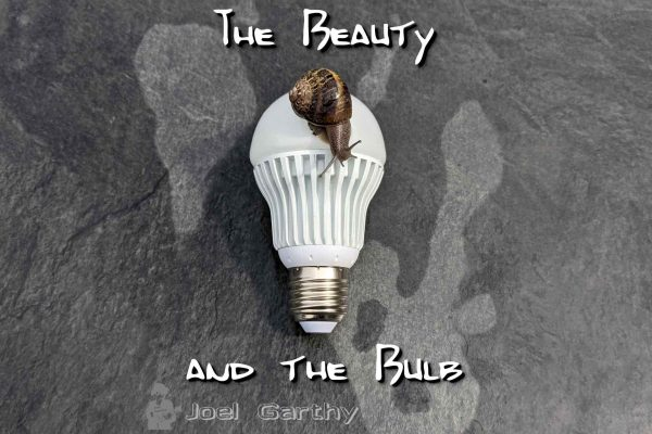 Beauty and the Bulb, COMING SOON